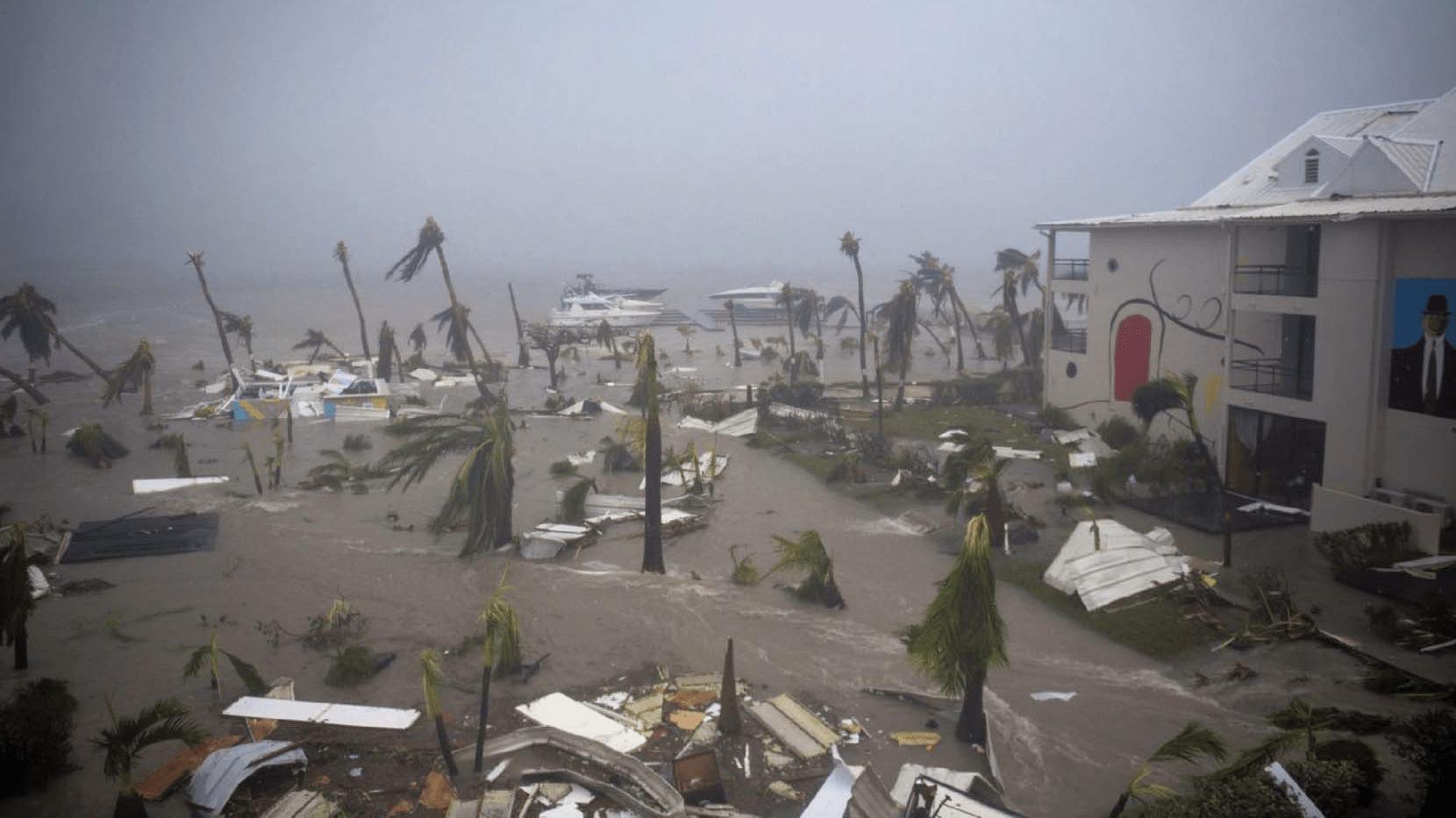 Dans l'oeil d'Irma